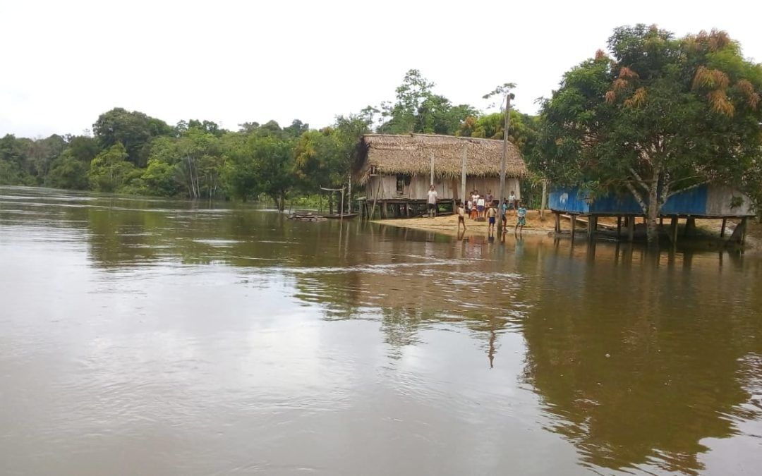 "The Amazon Project: ""A Church with Both an Amazonian and Native Face"""