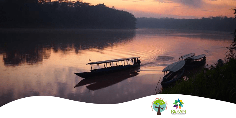 The Amazonian Ecclesial Conference: The Unity and Diversity of our Church